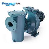 수영풀 물 옮기기를 위한 물 원심 펌프