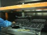 Macchina di rivestimento UV automatica di chiave in mano di 2-Axis Reciprocator