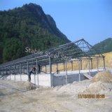 カスタマイズされるのための鉄骨構造のブタの小屋