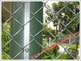 Galvanizado recubierto de PVC/Chain Link Dence