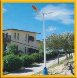 Lampe solaire extérieure avec du CE et le RoHS