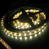 3528 60LED/M IP65 12V White LED Flexible Strip