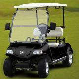 태양 전지판 전기 골프 차 또는 손수레 또는 2 륜 마차 (DEL3022G, 2-Seater)
