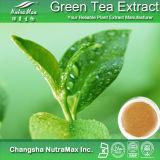 Чистый экстракт зеленого чая (98% EGCG)