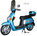 Elektrisches Fahrrad (350W, Brushlee Motor) (CTM-201)