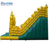 膨脹可能な跳躍の城のスライド、子供の膨脹可能なスライド