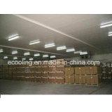 Grande armazenamento a frio para produtos hortícolas /Frutos frescos e Processamento de Manutenção