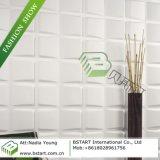 La BST Panneau de paroi décorative en 3D, les panneaux muraux (BST10007)