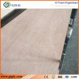 Madera contrachapada tamaño pequeño de la talla de la puerta de la piel Plywood/820X2150X2.7mm Okoume de la puerta