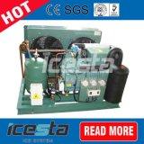 A unidade de refrigeração da unidade de condensação do compressor para pescar numa sala fria
