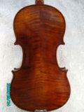 Violino (JAV004)