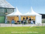 Tent (3029)