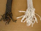 Graphited Verpakking van het Asbest met Olie Hysealing