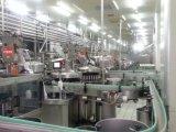Línea de transformación automática completa del yogur de la lechería 6000b/H