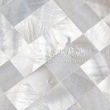 Mosaico blanco del shell 15*15 del agua dulce
