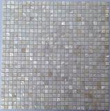 بيضاء [فرش وتر] قشرة قذيفة 10*10 على شبكة فسيفساء