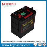 De kleine Mf van de Capaciteit 12V 36ah Batterij van de Auto met de Garantie van 2 Jaar