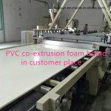 Sussidio elaborante alla scheda della gomma piuma del PVC