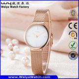 Relógio de pulso ocasional da mulher de quartzo da cinta de couro de OEM/ODM (Wy-062D)