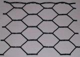 Hot DIP Galvanized gold PVC Coated 60X80 Hexagonal Wire Mesh (factory price)