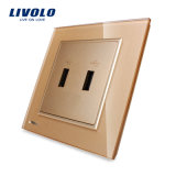 Livolo 2の一団USBのプラグのソケットの壁コンセントVl-W292u-11/12/13