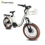 [بروون] لون إطار العجلة [فولدبل] كهربائيّة درّاجة [20ينش] دهن إطار العجلة