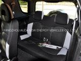 Мода дизайн салона автомобиля с электроприводом высокого качества