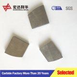 Pulido de excelente calidad para el corte de puntas de carburo de tungsteno