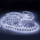 Indicatore luminoso di striscia caldo del nastro Ws2812b LED di vendita 60 LEDs/M LED per i vestiti