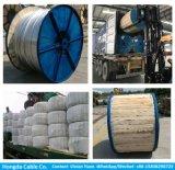 Fil renforcé par acier en aluminium supplémentaire de conducteurs (ACSR)