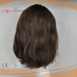 China Human Hair Jewish Kosher Wig (PPG-l-0293)