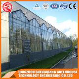 Landwirtschaftliches Gewächshaus PC Blatt Venlos Gewächshaus-Polycarbonat-Gewächshaus für Garten