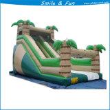 娯楽のための膨脹可能な弾力がある城か跳躍の城または水公園の城