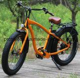 세륨을%s 가진 전기 자전거를 경주하는 21 속도 리튬