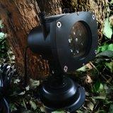 Lumière détachable de projecteur de laser de bonnes configurations bon marché de Ce/RoHS 12 pour la décoration extérieure
