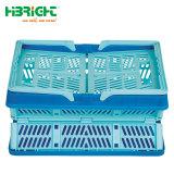 Caixa de caixas coloridas de plástico dobráveis contentor