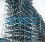 Coffre-fort avec des matériaux d'Échafaudage Ringlock Certification CE