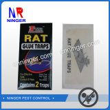 Desvíos calientes del pegamento de la rata y del ratón del OEM de la exportación de América
