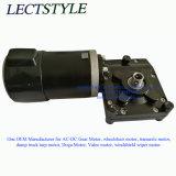 12V 24V 320W 45rpm-80rpm elektrischer Fußgängerladeplatten-LKW-Motor