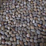 Полированный настольный светильник в форме камня полимера 1-0.5мм малых мощеной камешками на сад