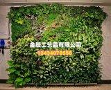 Piante di alta qualità e fiori artificiali del giardino verticale Gu1123wa012712