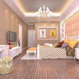 Tegel van de Vloer van het Porselein van de woonkamer de Rustieke