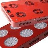 OEM 320W LED는 중국에 있는 가벼운 제조자를 증가한다