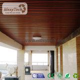 現代健全な複合材料の装飾的な天井