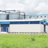 10-500t/D beenden Weizen-Getreidemühle-Maschine