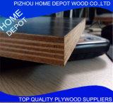 O tamanho 1220X2440mm da película Assorted da espessura enfrentou a madeira compensada