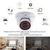 960p de Camera van de Veiligheid van de Koepel van kabeltelevisie van Ahd HD van het Bewijs van de vandaal