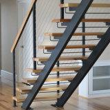 Un interior moderno de vidrio de acero Escaleras Escalera de madera (PR-2013)