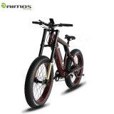 AMS Tde Sr 48V 1000W 눈 전기 뚱뚱한 타이어 자전거 전기 스쿠터