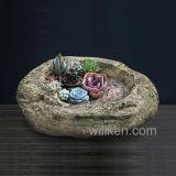 El Succulent de escritorio personalizado de los bonsais planta los crisoles de flor